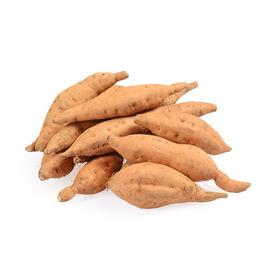 贵州 紫云红心薯