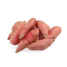 浙江 天目山香薯