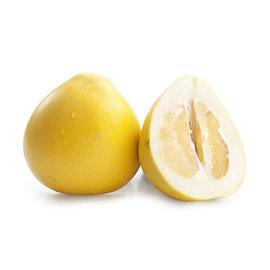 福建 平和沙地柚