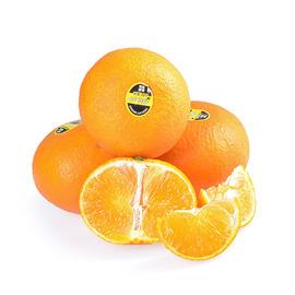 四川 愛媛38號橘橙