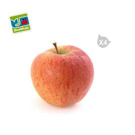 法國 藍鯨嘎啦蘋果