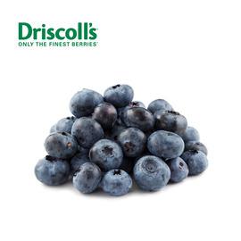 Driscoll's 怡颗莓 蓝莓(14-18 mm大果)