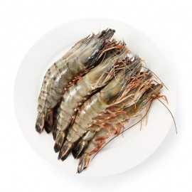 拓食 生冻黑虎虾(大)