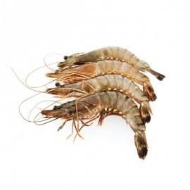 拓食 生冻黑虎虾