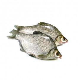 鲜活鳊鱼(现杀)