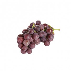 施泉 精选巨峰葡萄