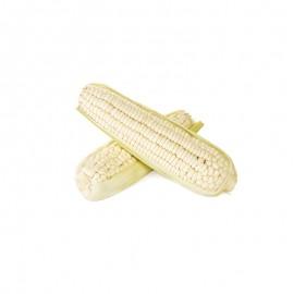 有机甜玉米