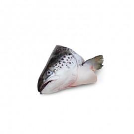 新西蘭 帝王鮭冷凍魚頭