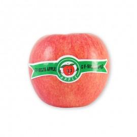 陕西 世界一苹果