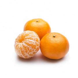 廣西 沃柑蜜桔
