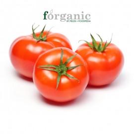 Forganic 有機 トマト
