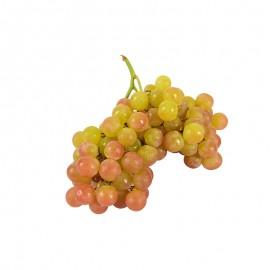 智利 麝香葡萄