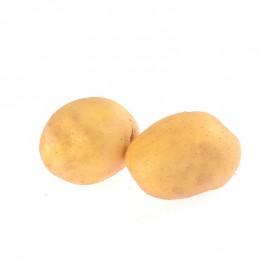 朝日綠源 有機土豆