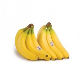 Dole 都乐菲律宾香蕉