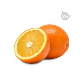 新奇士 加州陽光晚臍橙