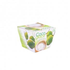 Coco Glace 旺顿牌热带椰子冷冻饮品(含椰子果肉)