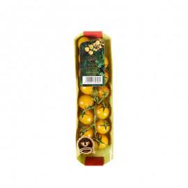 枝純 串收番茄(黃)