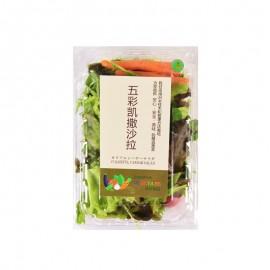 VE,GE,TA,BE Colorful Caesar Salad