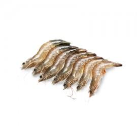 冷凍生白蝦(厄瓜多爾白蝦)