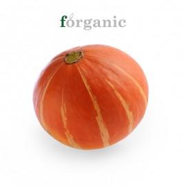 forganic Yellow Pumpkin