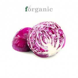 forganic 有机紫甘蓝