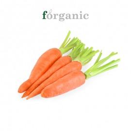 forganic 有机胡萝卜