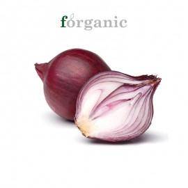 forganic 有机紫洋葱
