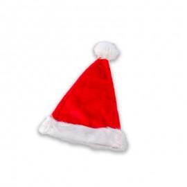 Adult's Santa Claus Hat