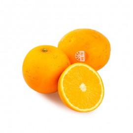 褚橙(玉溪云冠橙)
