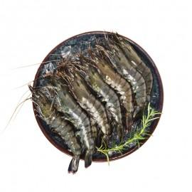 生凍馬來西亞 黑虎蝦(12-15頭)