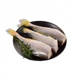 醇香小黃魚