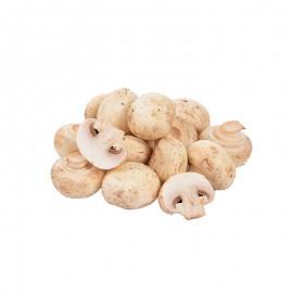 森德 有机双孢菇