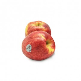 Envy 美國愛妃蘋果