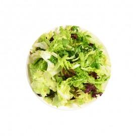 蔬氏 美式经典沙拉蔬菜